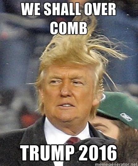 funny-donald-trump-president-memes-2016-hair